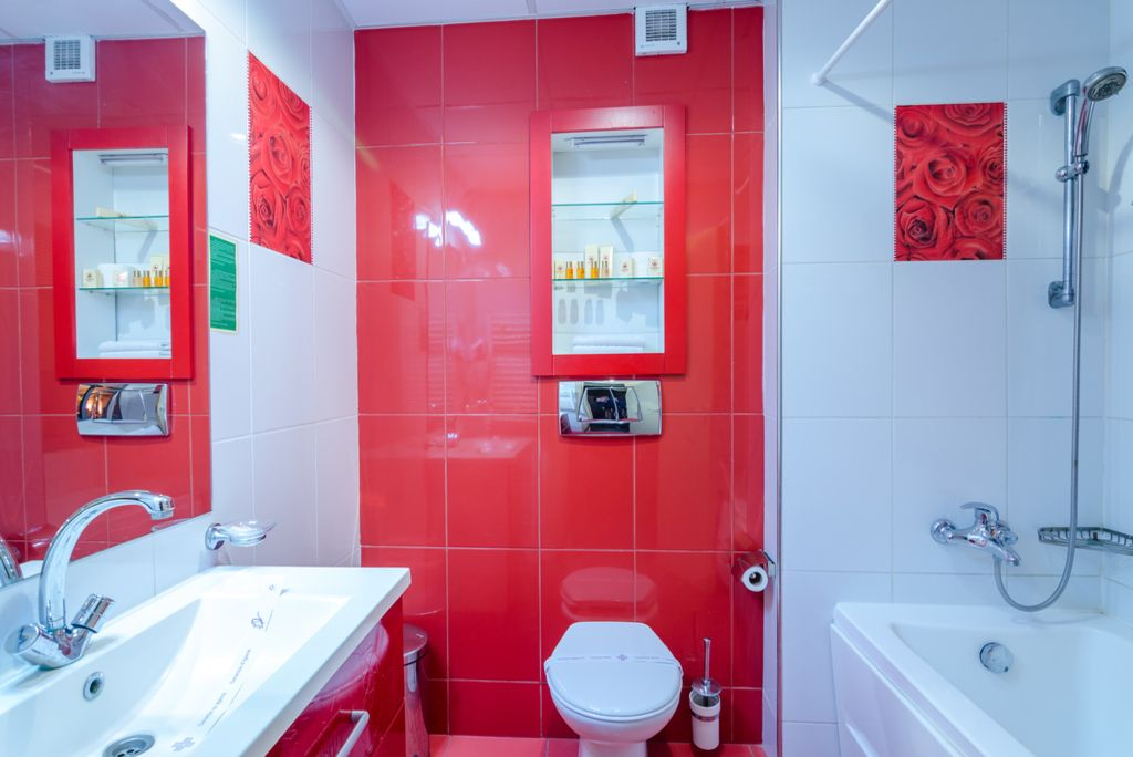 Cameră Standard cu pat matrimonial -Phoenicia Express